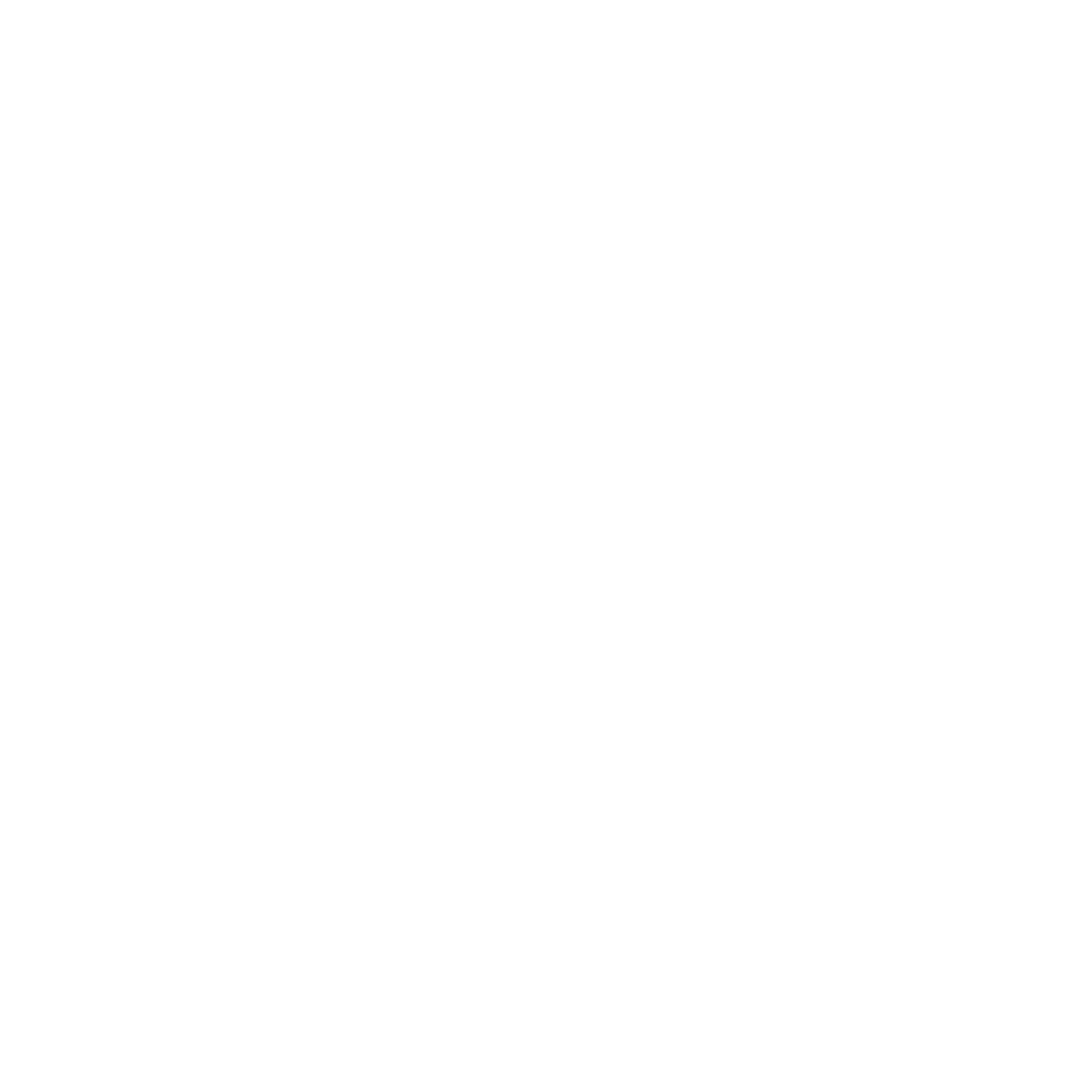 Governors-Ball-Logo-White.png