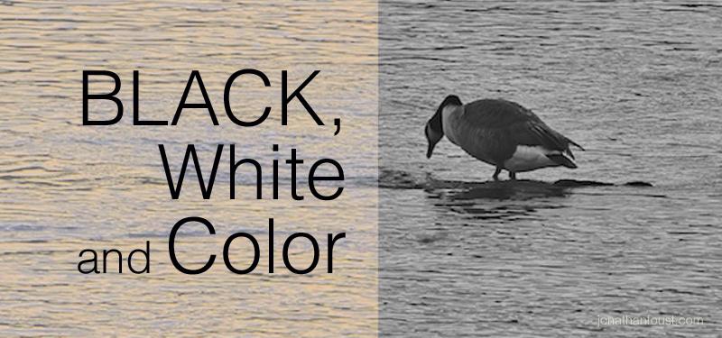 BlackWhiteandColor.jpg