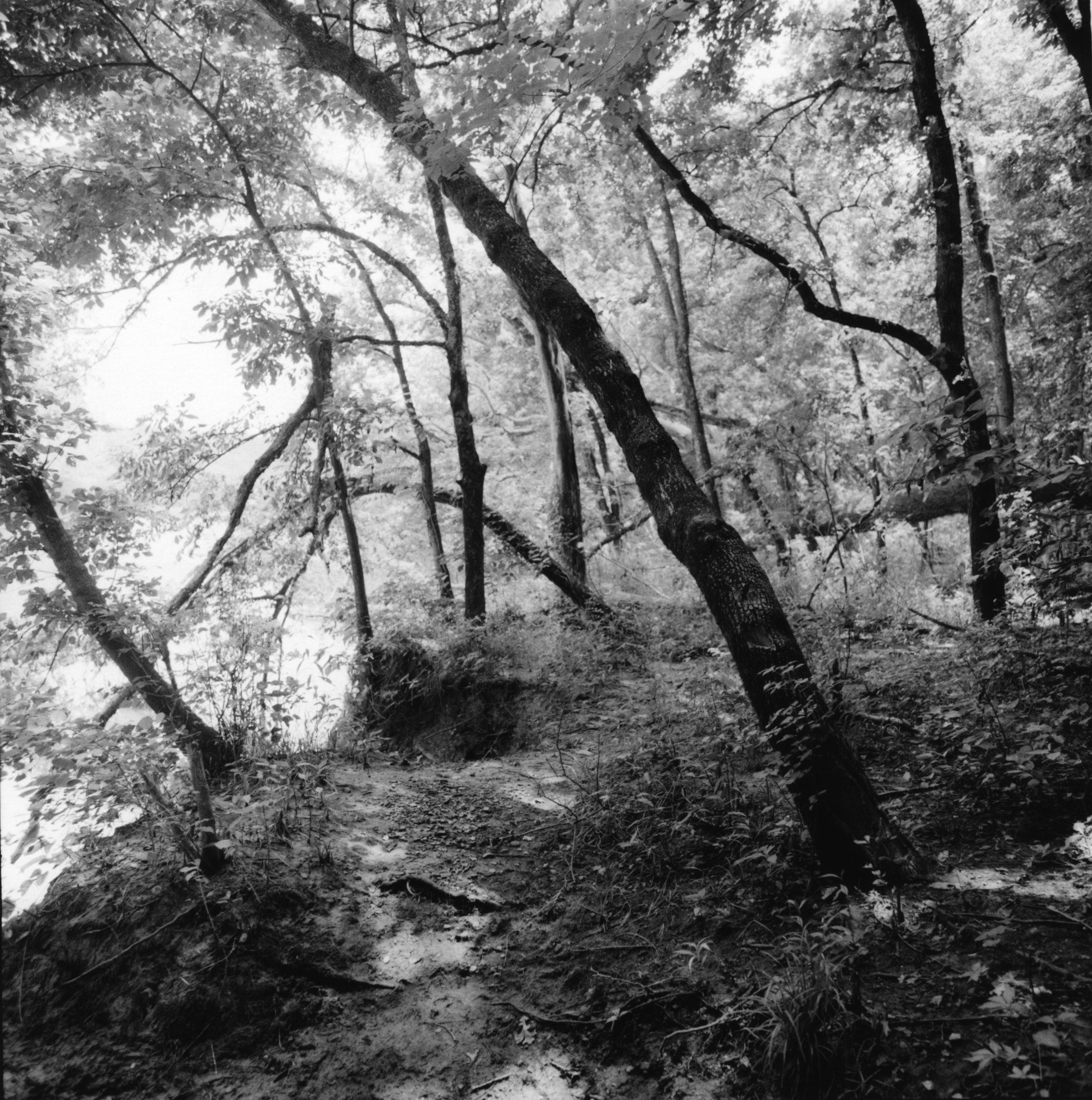 Cabin Creek, Oklahoma, 1999