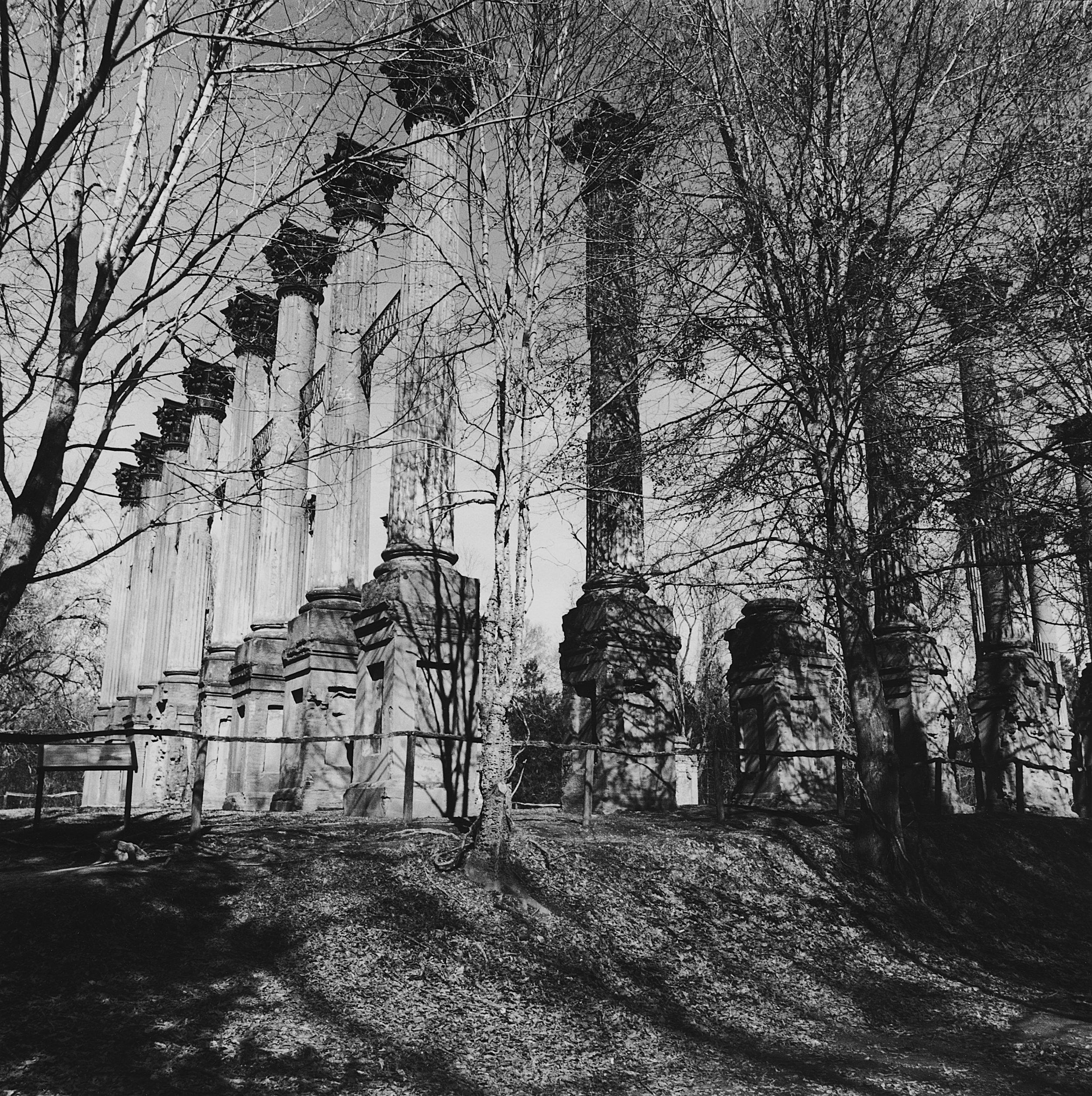 Windsor Plantation Ruins, Lorman, Mississippi, 2004