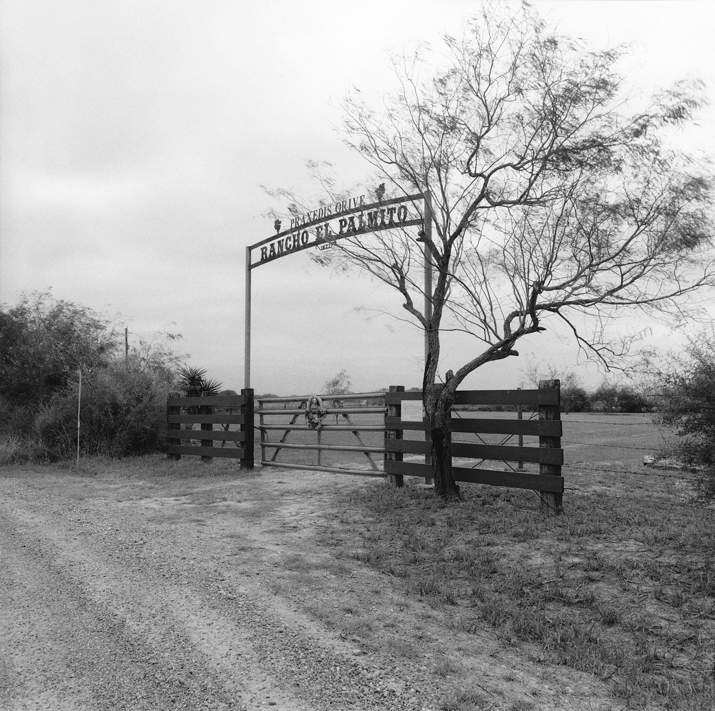 Palmetto Ranch Gate, Texas, 2001