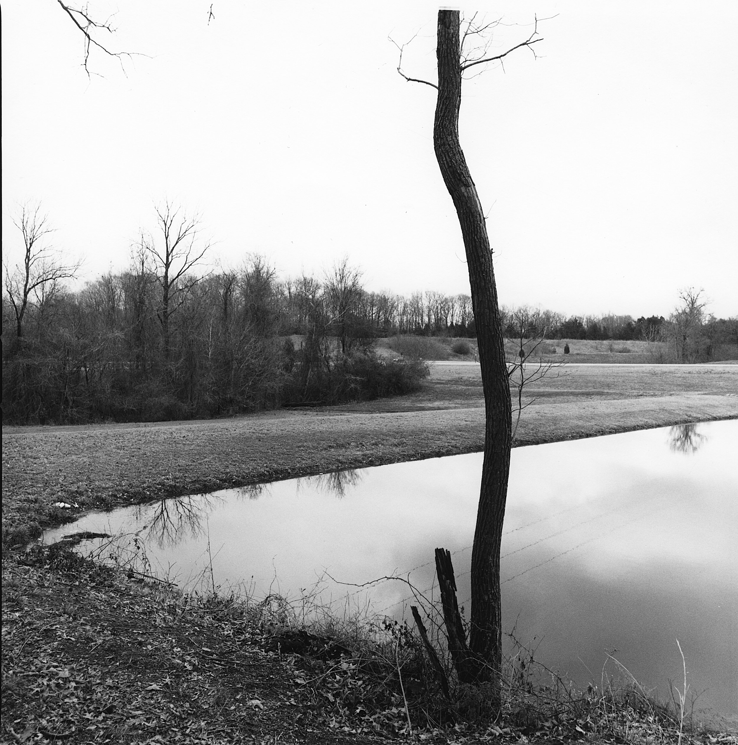 Tupelo Mississippi, 2004