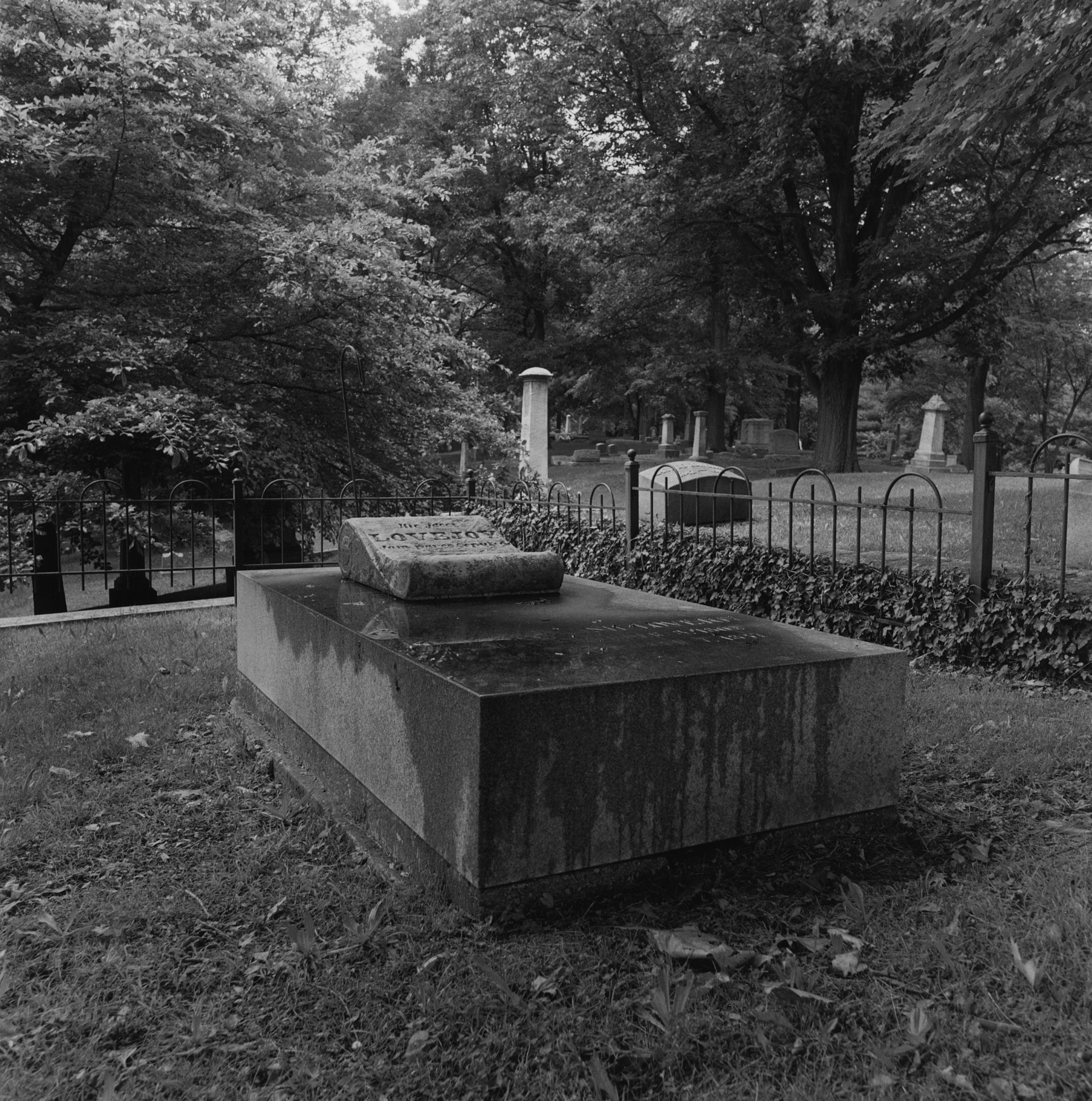 LoveJoy Grave, City Cemetery, Alton, Illinois, 2010