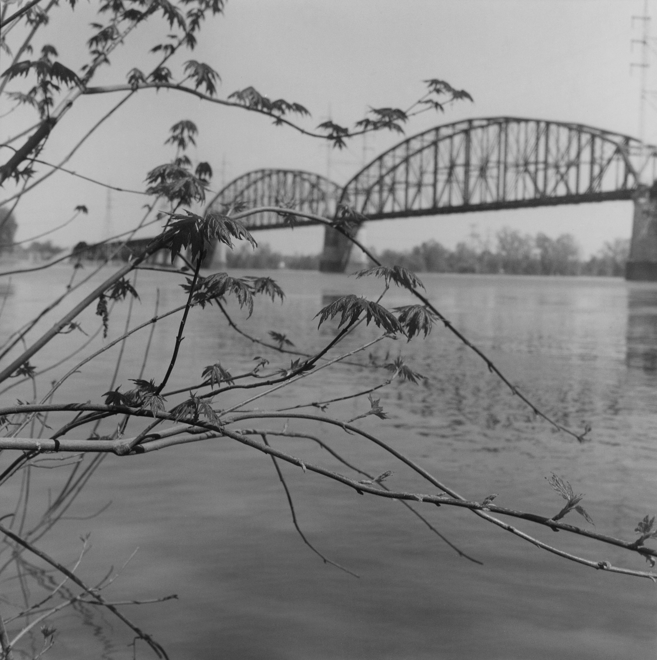 Mary Meachum Freedom Crossing with Bridge, St. Louis, Missouri, 2010
