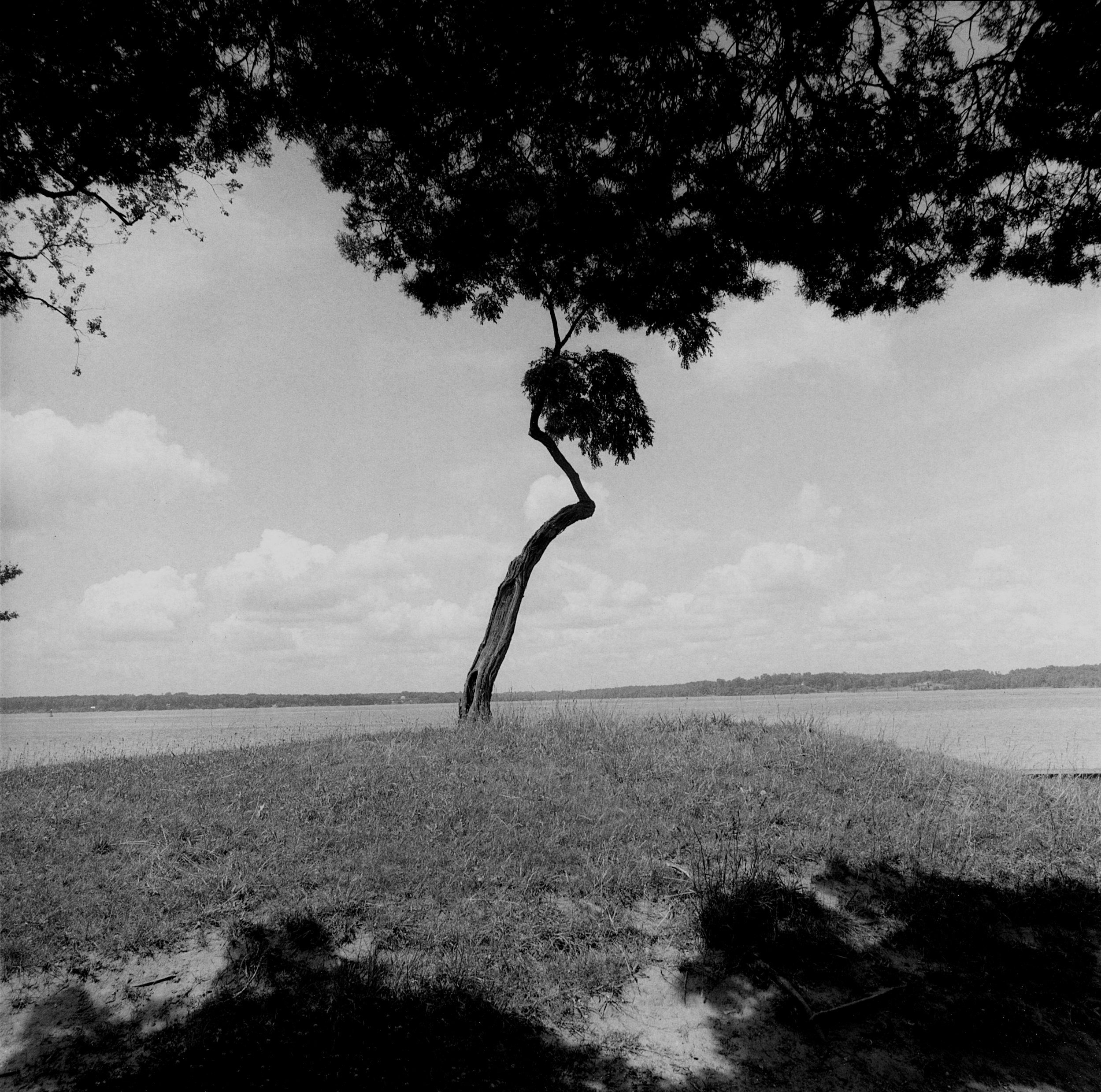 Jamestown Island, Virginia, 1996