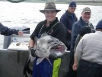 Fish Chatham Islands.jpg