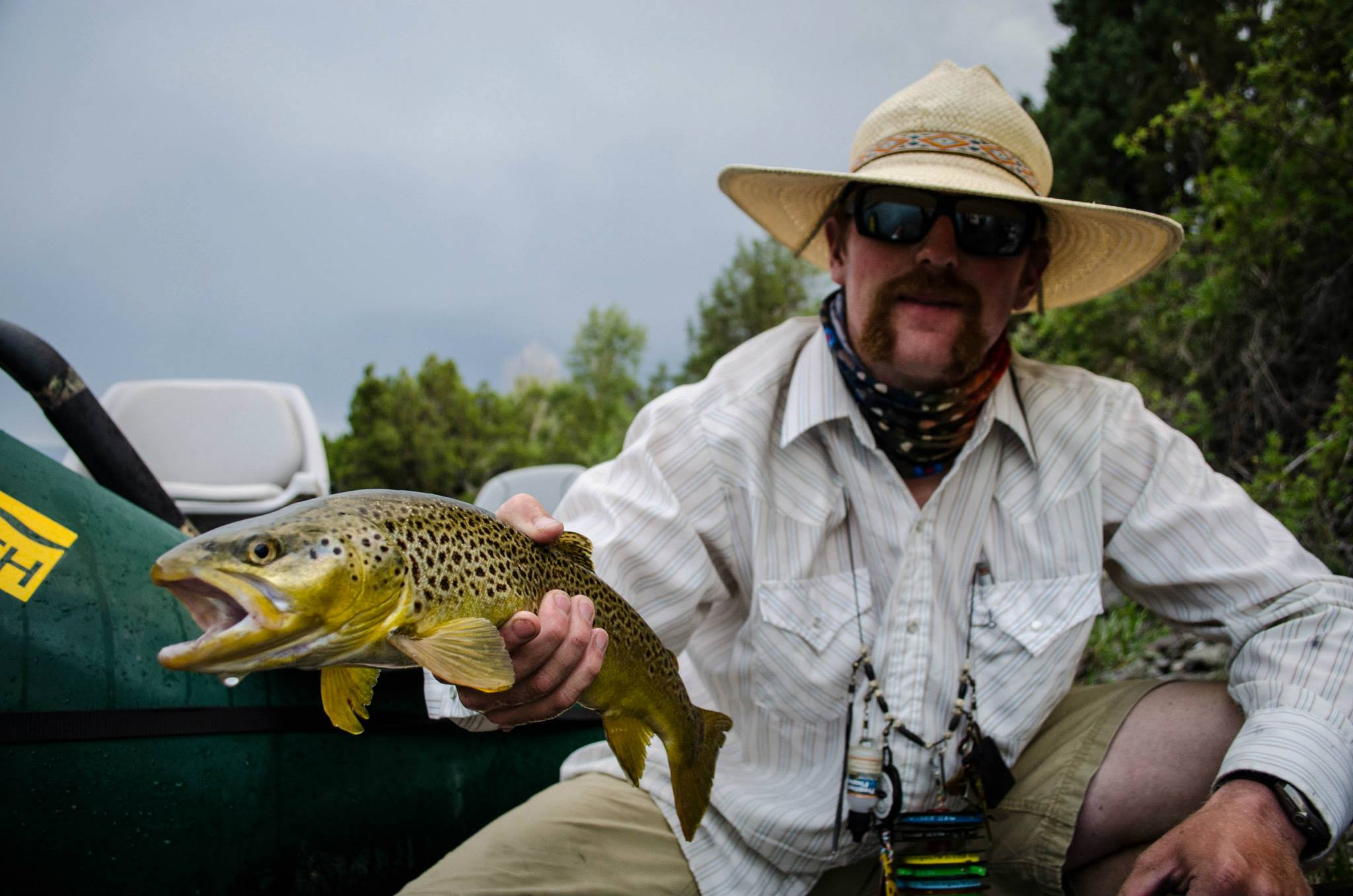 Yellowstone River Outfitters Salmonfly