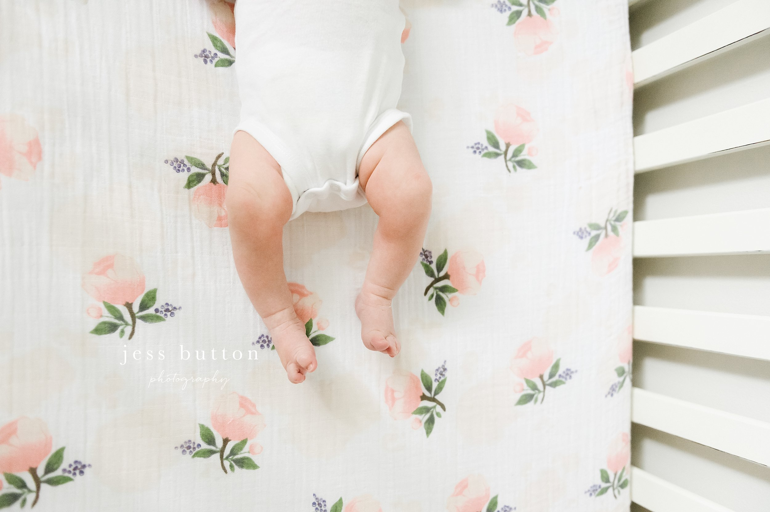 St Catharines Newborn Photographer