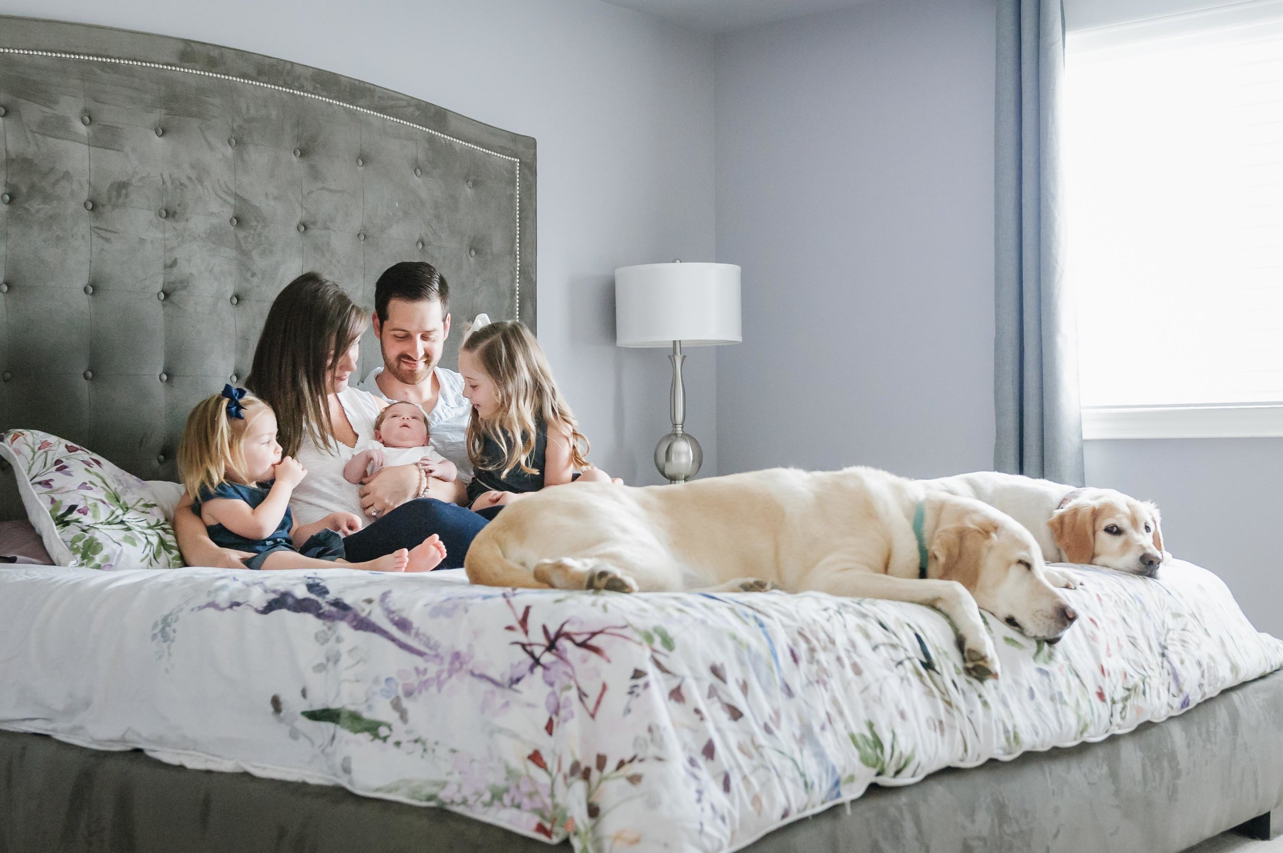 family of 5 on bed with dogs - Niagara lifestyle photographer