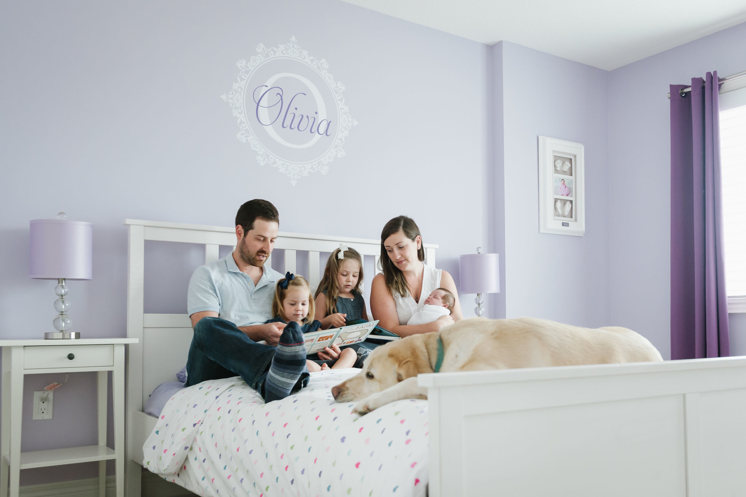 family reading stories on bed with dogs and new baby girl - niagara lifestyle newborn photographer
