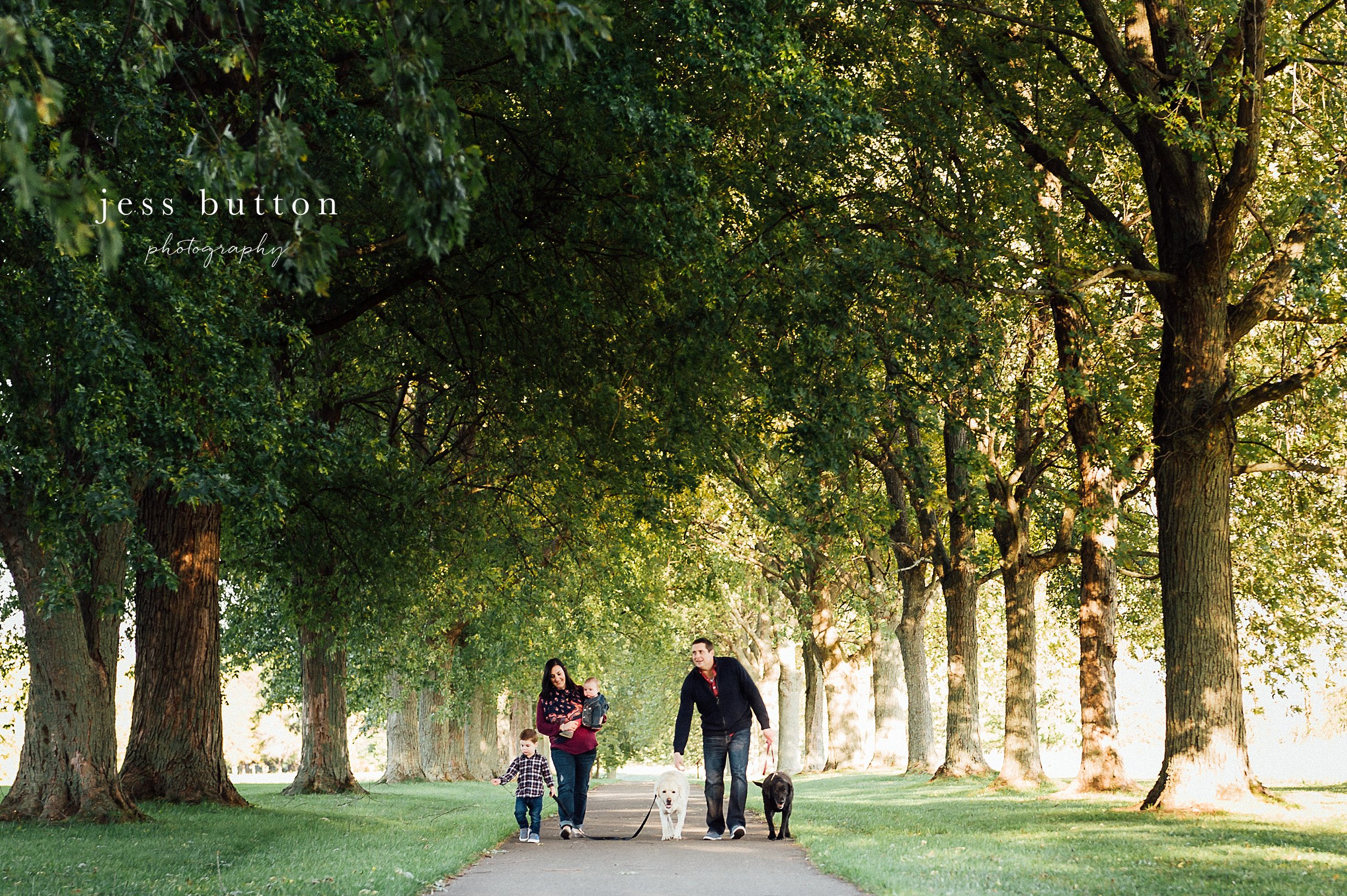 Niagara Family Photographer - Fall family portraits Niagara-on-the-Lake - mom, dad, boy, girl and dogs walking together on tree lined path