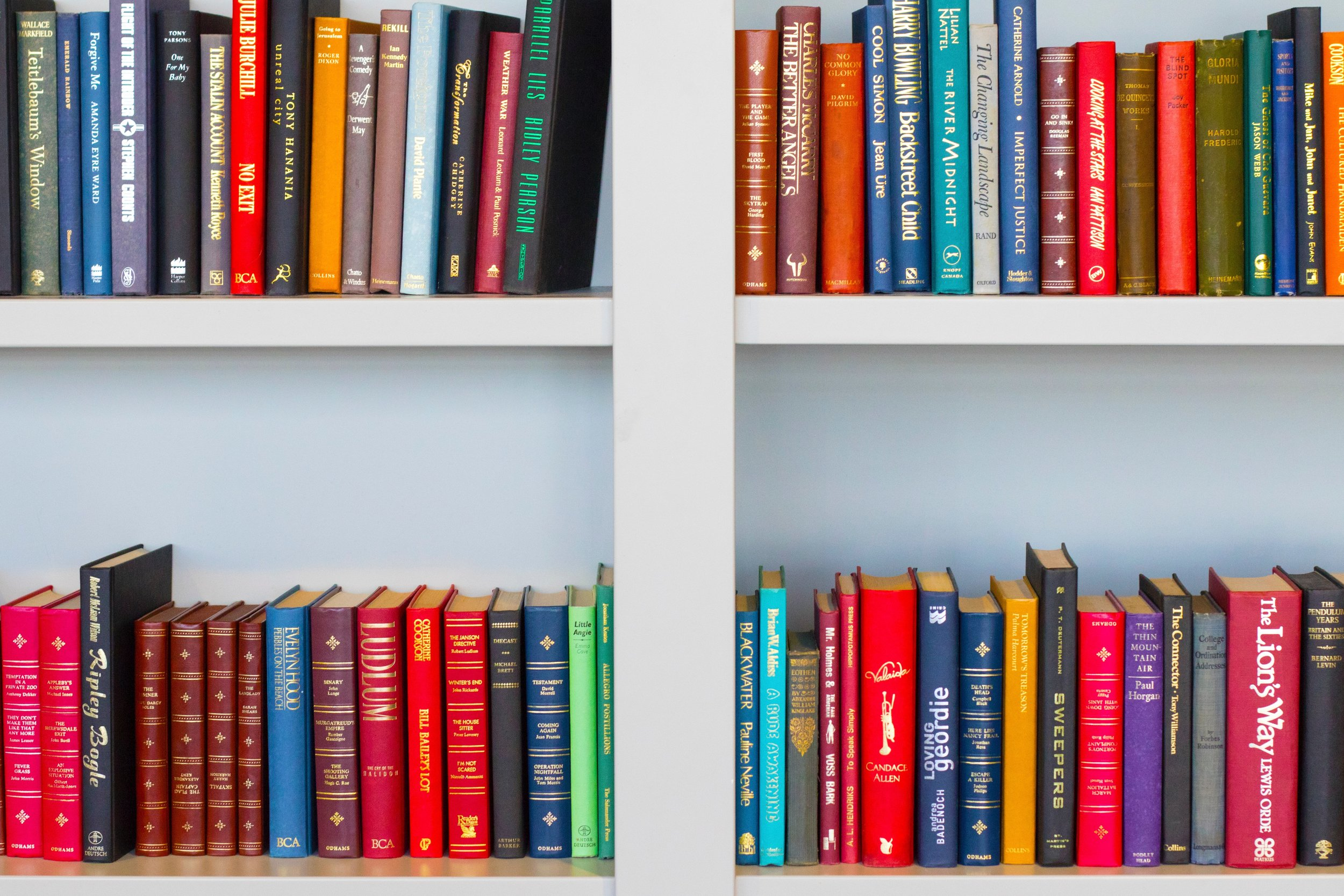 spark-joy-bay-area-konmari-method-organizing-books