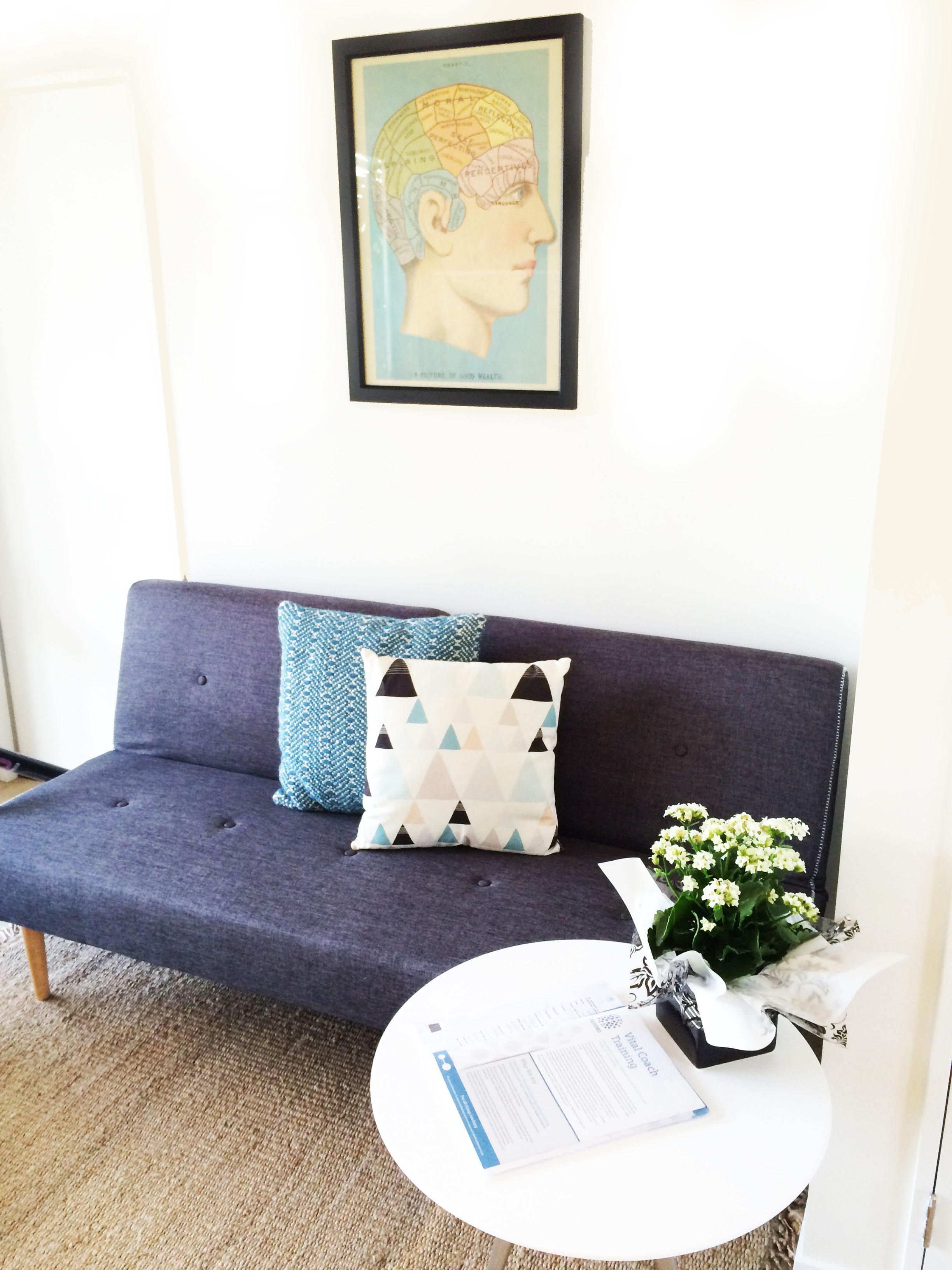 Couch with coloured pillows and anatomy artwork in background