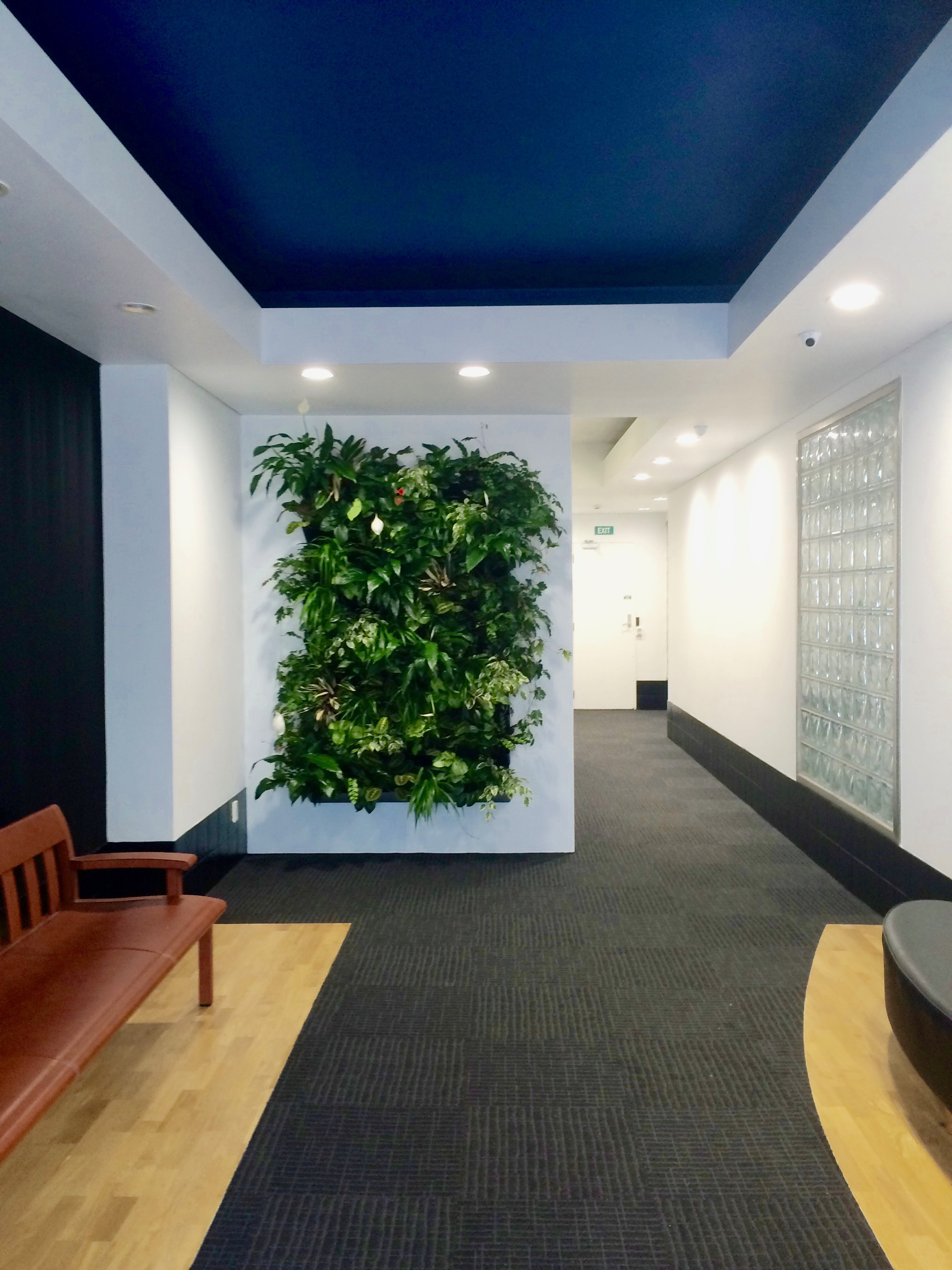 Incorporating nature into the Voyager lobby
