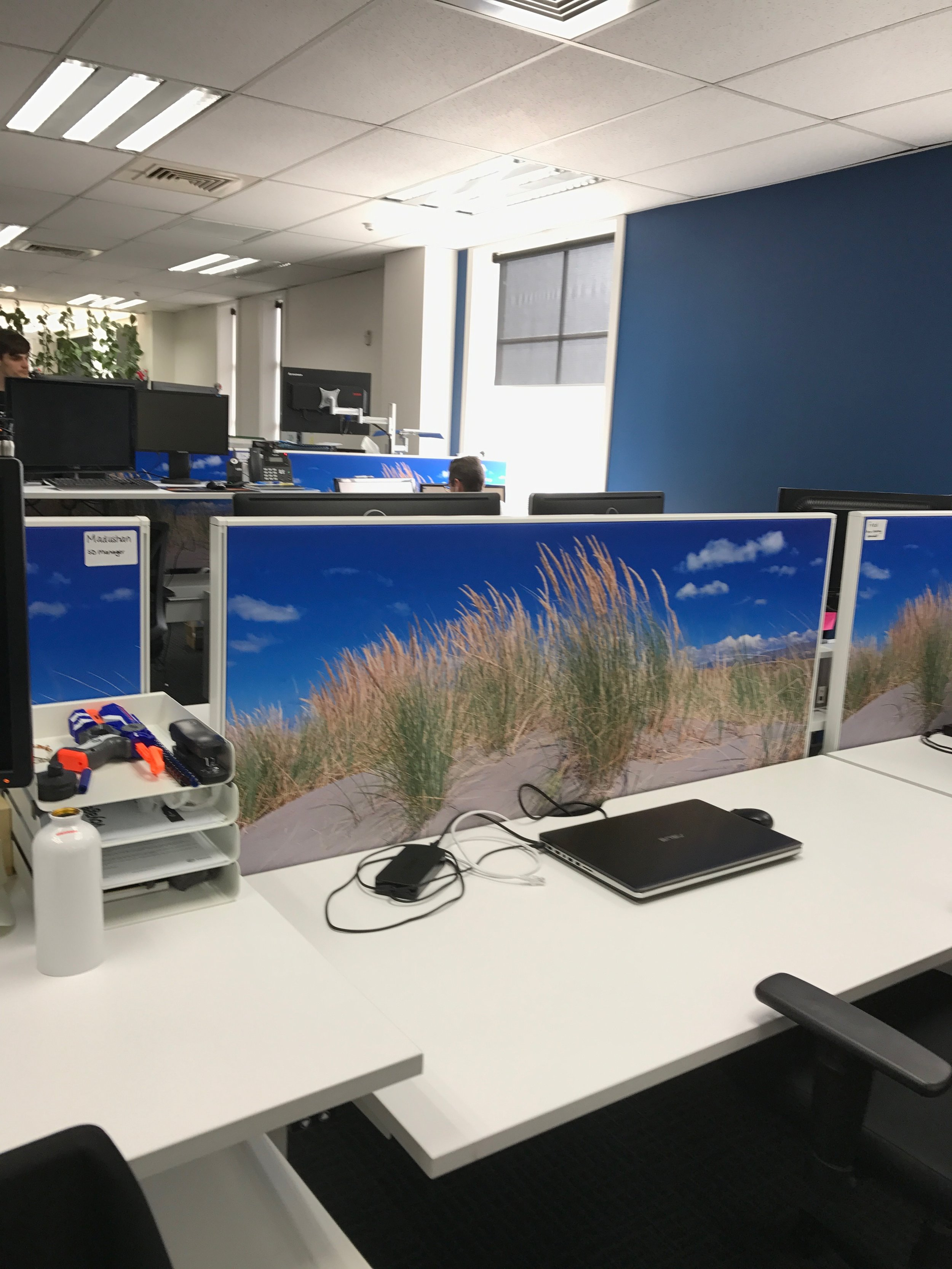 Natural feeling workplace design