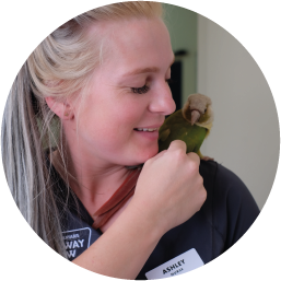 ASHLEY PHILIP  VETERINARY NURSE  Ashley started working with us in January 2016. She's been working as a nurse for over 7 years and works at our clinic part-time. Ashley is a big supporter of adoption and loves giving animals a furrever home. She's the enviable favourite of our resident bird, Two Toes.