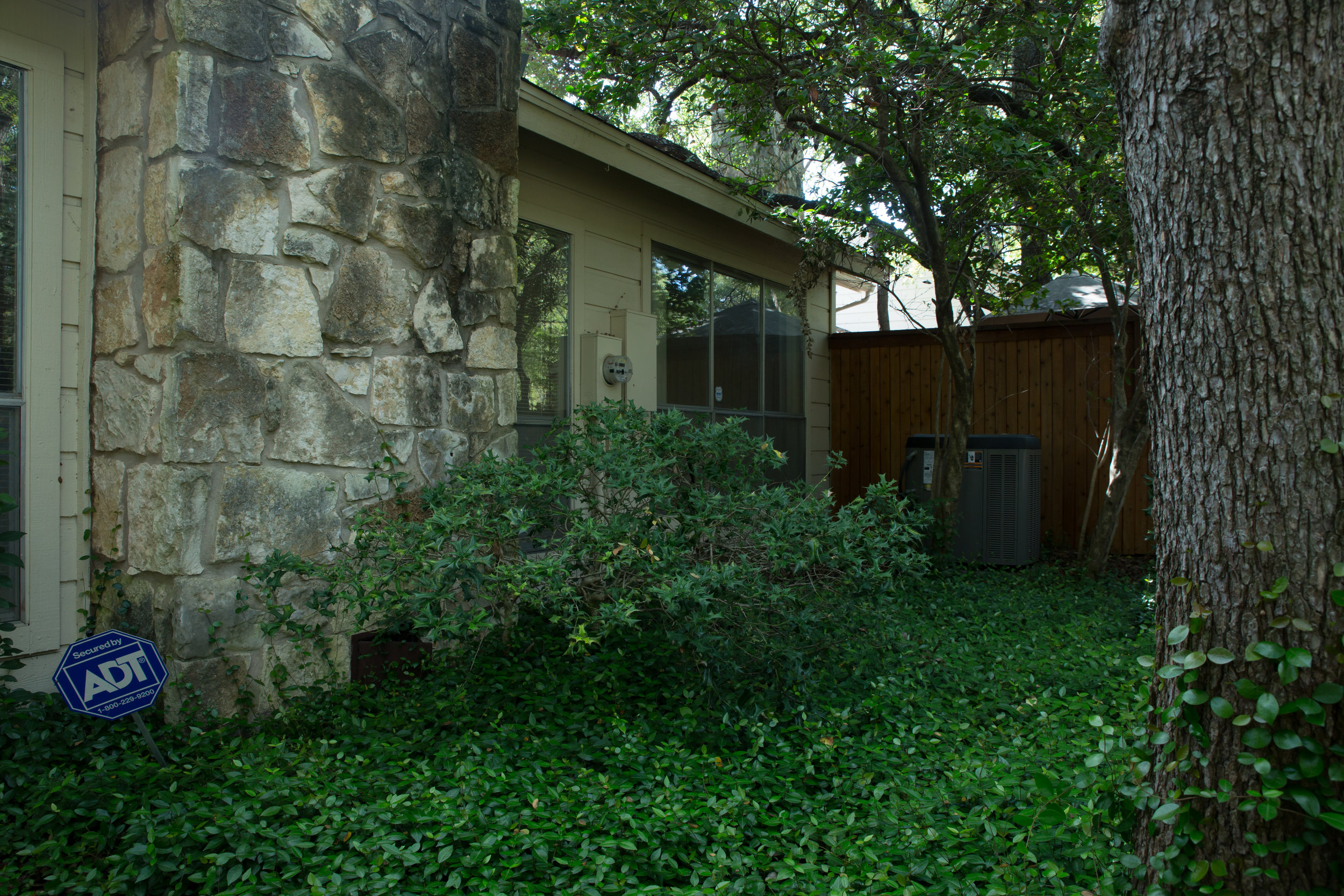 Backyard/Patio