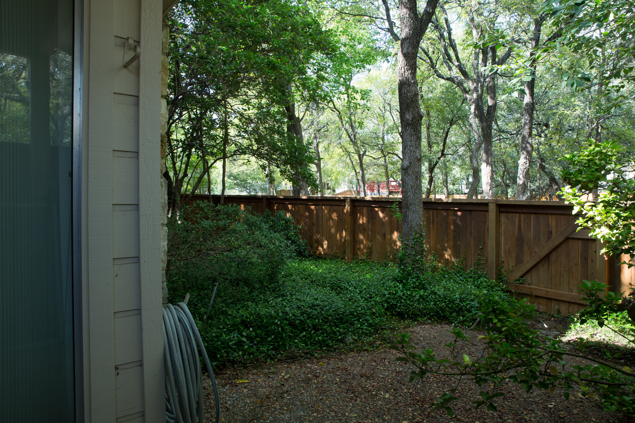 Overgrown back yard space before photo of renovated austin condo