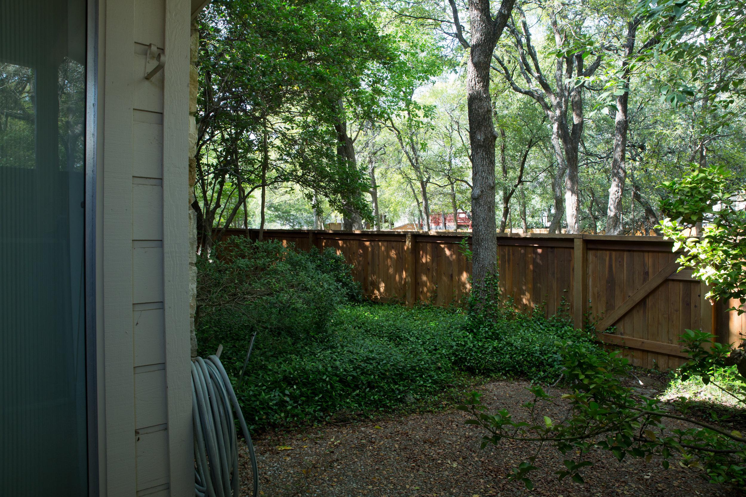 Overgrown Backyard Before Redesign