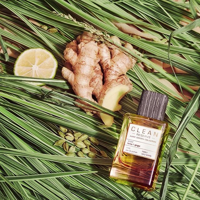 Spicy and woody Hemp & Ginger is sure to invigorate ❤ #AvantGardenToFragrance #MyCLEAN ( #📷 @cleanbeauty_collective )