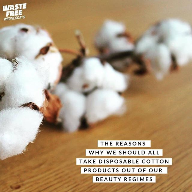 ⁠ ⁠ Have you simplified your beauty regime to become more sustainable?⁠ .⁠ Reducing your dependence on single use disposable products is one of the easiest ways to make your living habits more sustainable. Cotton buds and cotton pads are soft on our skin, cheap and convenient to use, but are you aware of the environmental impacts of growing cotton? Did you know it takes 2700 litres of water to produce one cotton T-shirt - that's more than one person would drink in 2 years. So imagine how much water we waste on disposable cotton products. Not only does cotton require a lot of water to produce it also requires a lot of pesticides that then leach into the ground water affecting nature, wildlife and local people.⁠ .⁠ Removing disposable cotton from our beauty regimes can therefore only have a positive impact on the planet, reducing our garbage, water use, pesticide reliance and the plastic packaging it all comes in.⁠ .⁠ There are so many great options on the market now including facehalo, makeuperaser, marleysmonsters, muslin cloths, or even a simple flannel. Instead of cotton buds why not invest in a lastswab⁠ .⁠ So what will you chose to use instead of disposables?⁠ .⁠ .⁠ .⁠ .⁠ .⁠ #wastefreewednesday #wfwchallenge #beauty #beautyregime #reuse #sustainableliving #sustainablebeauty #cleanbeauty #cleanface #facehalo #makeupremover #lessplastic #notrash #noplasticpackaging #cleanseas #ecofriendlyliving #ecotips #greentips #livegreen #ourplanetourhome #sustainablebrand #reduceyourfootprint #reuseable ( #📷 @sanna_planet_earth )