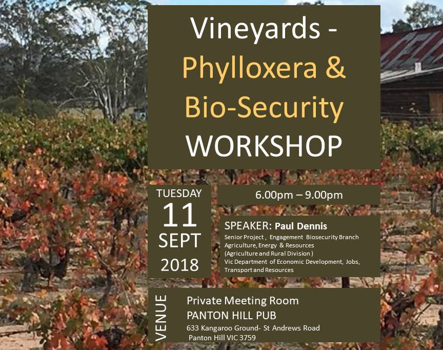 Phylloxera workshop.jpg