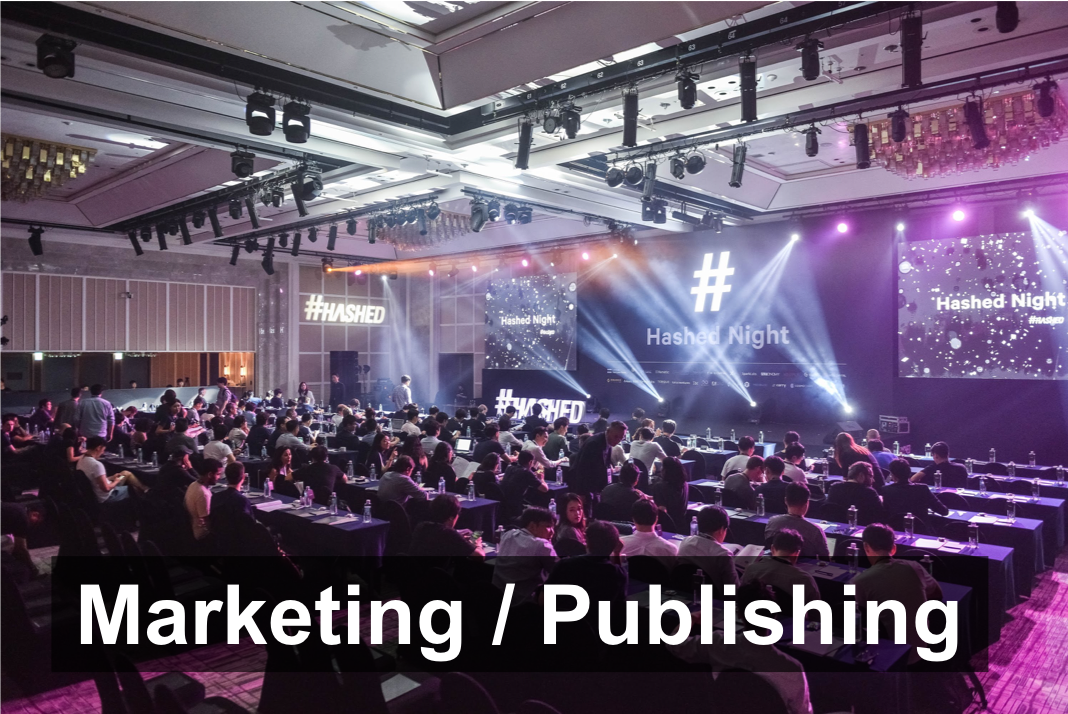 Marketing strategy/publishing consultations