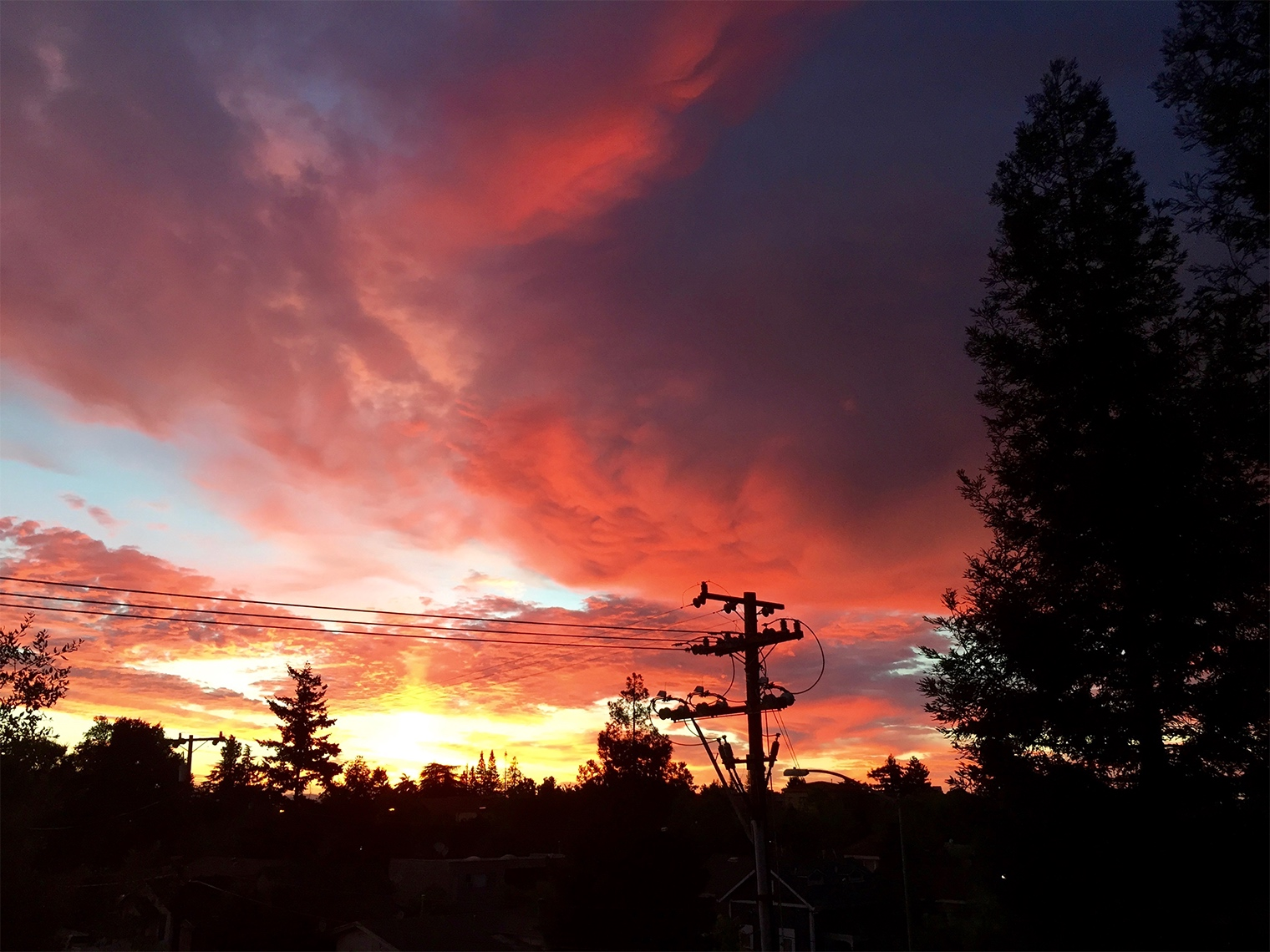 Sunset in Campbell, California