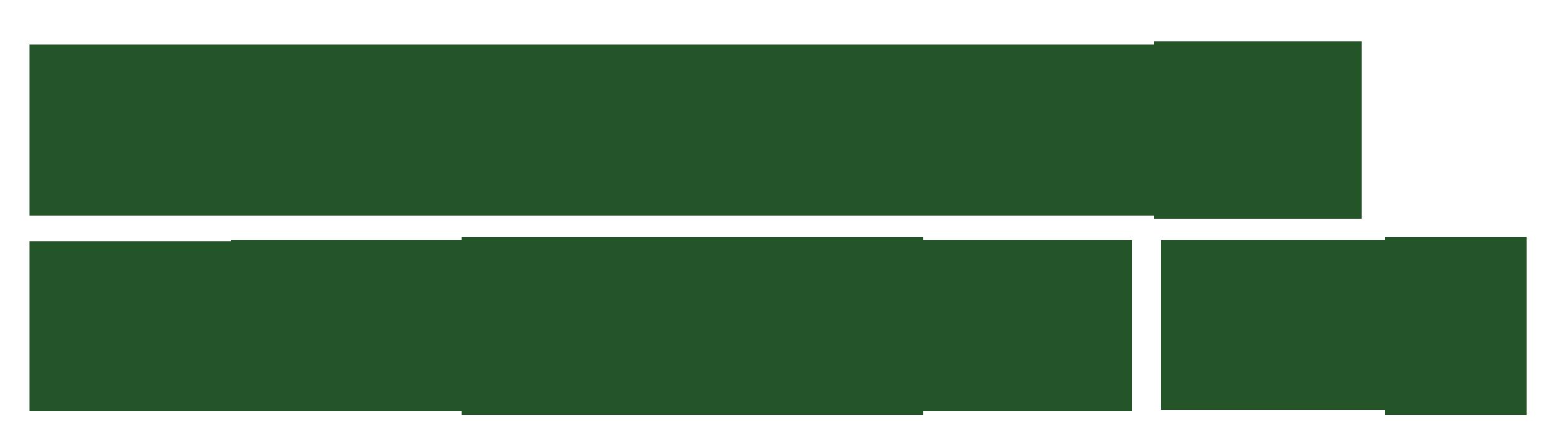 Nyhavns_faergekro_logo