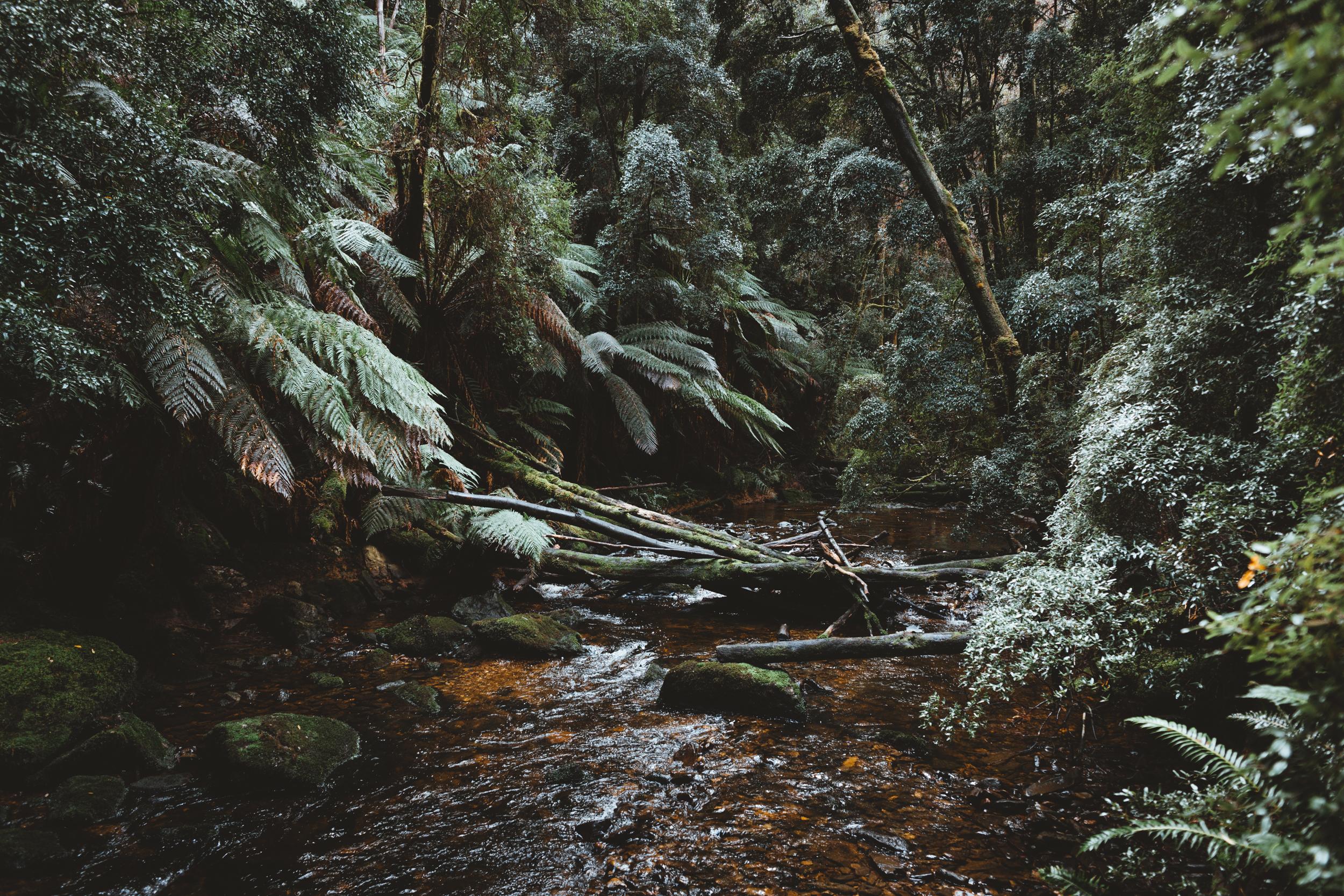 (5) Nelson Falls River.jpg