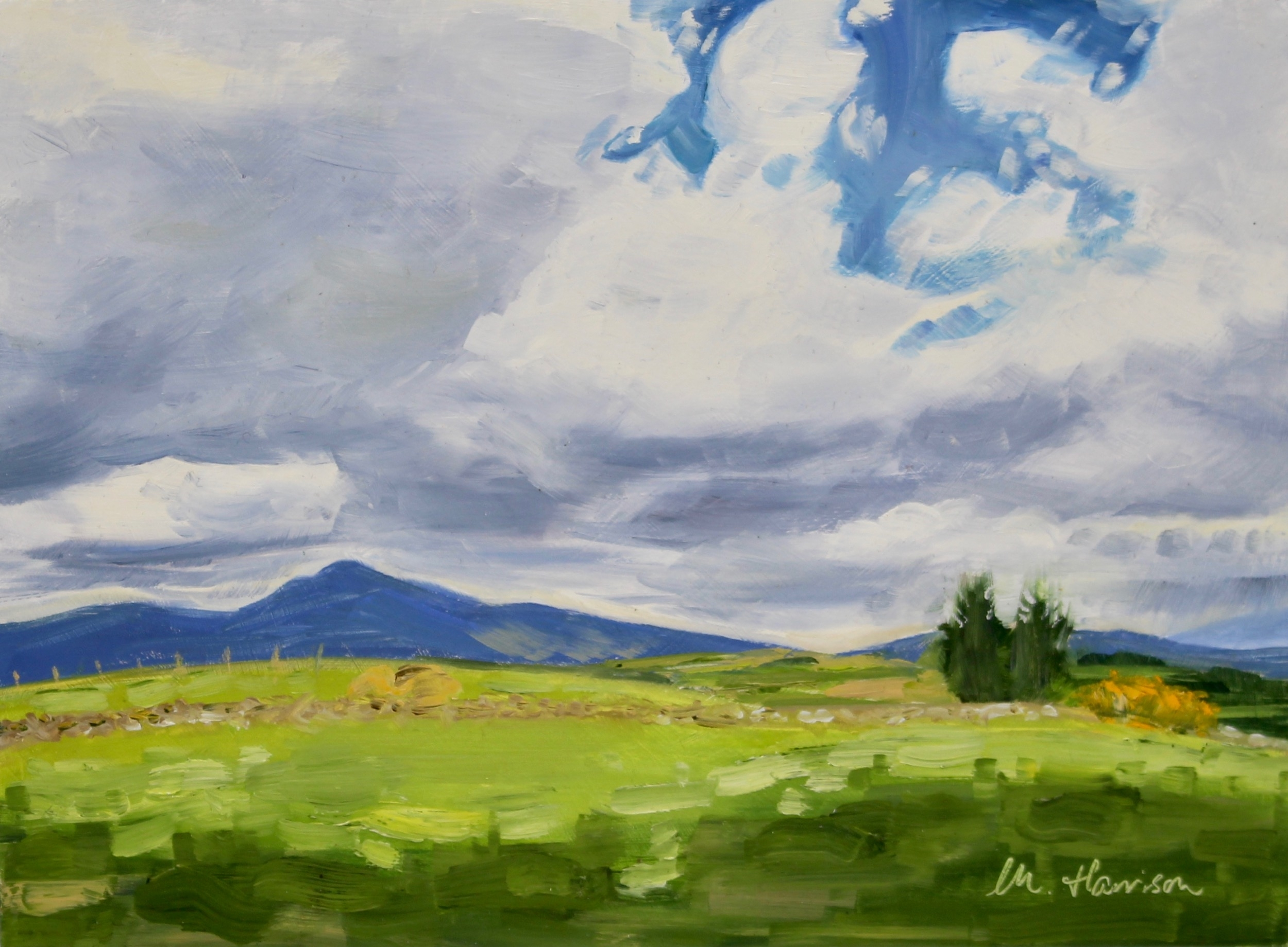 'Fleeting Sunlight by Bennachie' (oil on panel, 9x12 inches)   I painted this picture  alla prima  from a photo reference.  It shows the majestic hill 'Bennachie', which dominates the Aberdeenshire countryside near Inverurie where I grew up.  I have kept this painting in my private collection given that it is a view I love.