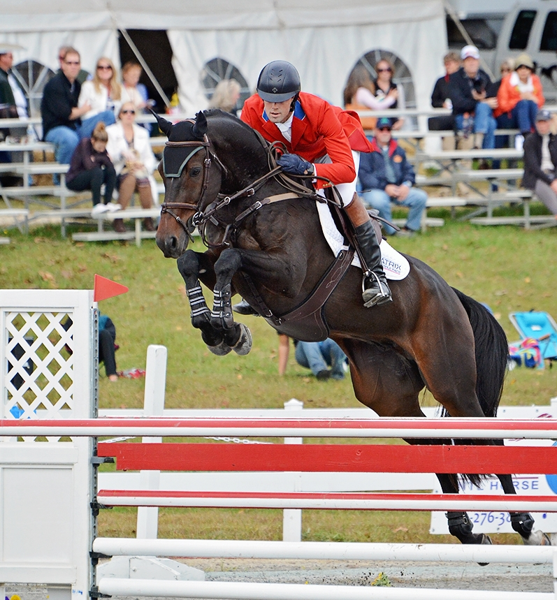 Boris O'hara - Competing successfully at CCI** level with Will Coleman ( EN )