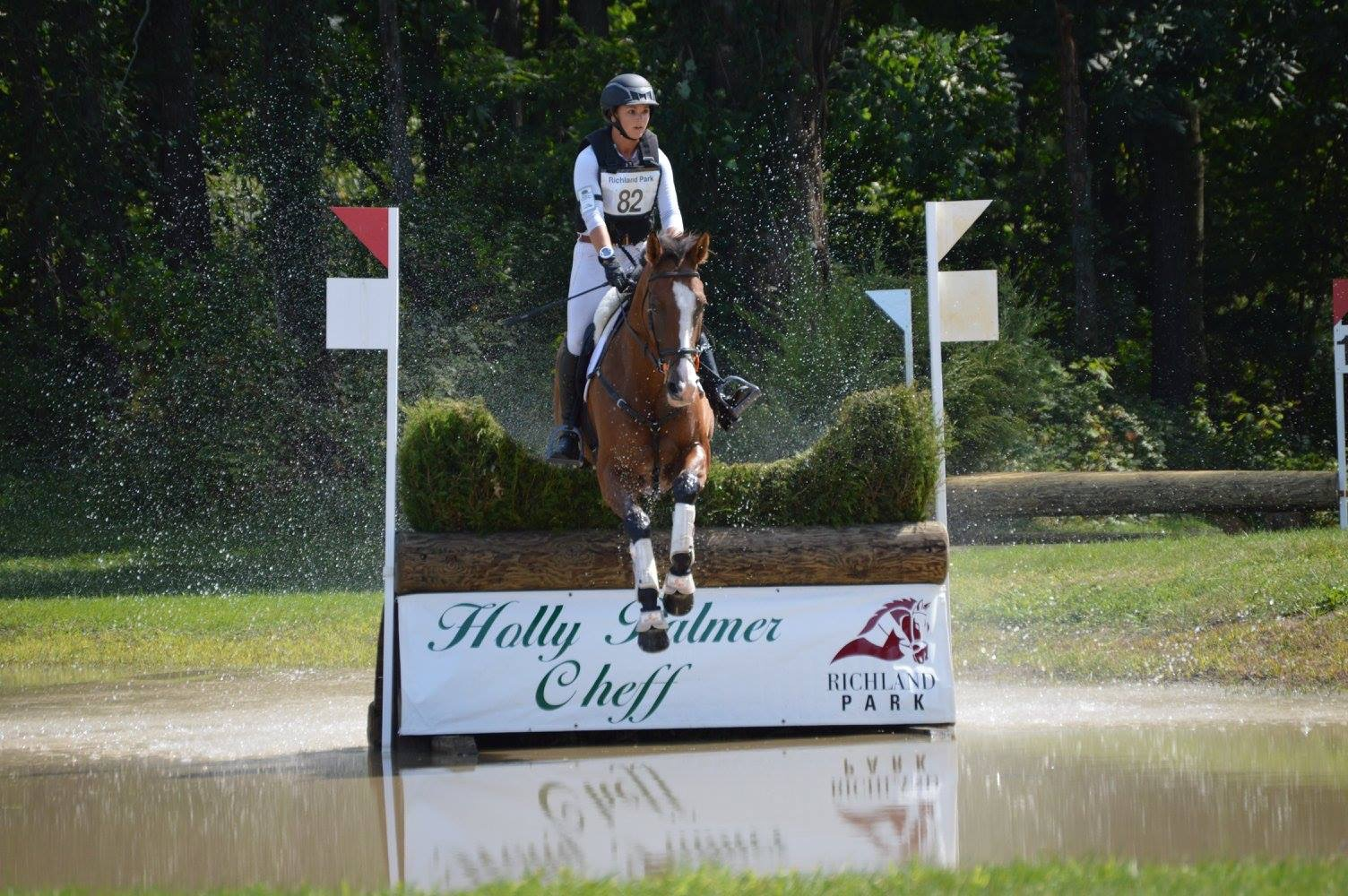 Fury H - Currently competing CCI*