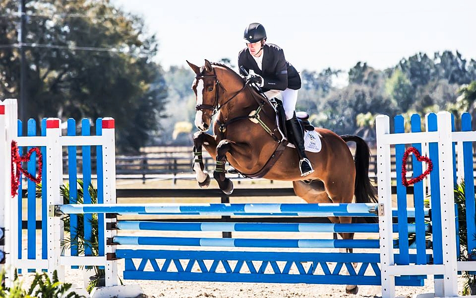 Nice as Twice - Successfully competing in Junior Equitation classes.