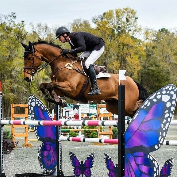 Thanks to USEA for this great pic of Wizzerd! Both Wiz and Get Lucky completed the weekend in the top 10 at their first Advanced competitions. Well done boys! Thank you as always to sponsors @forestiersellier and @soteriausa 📷 USEA #goeventing #eventing #rhht2018 #kwpn