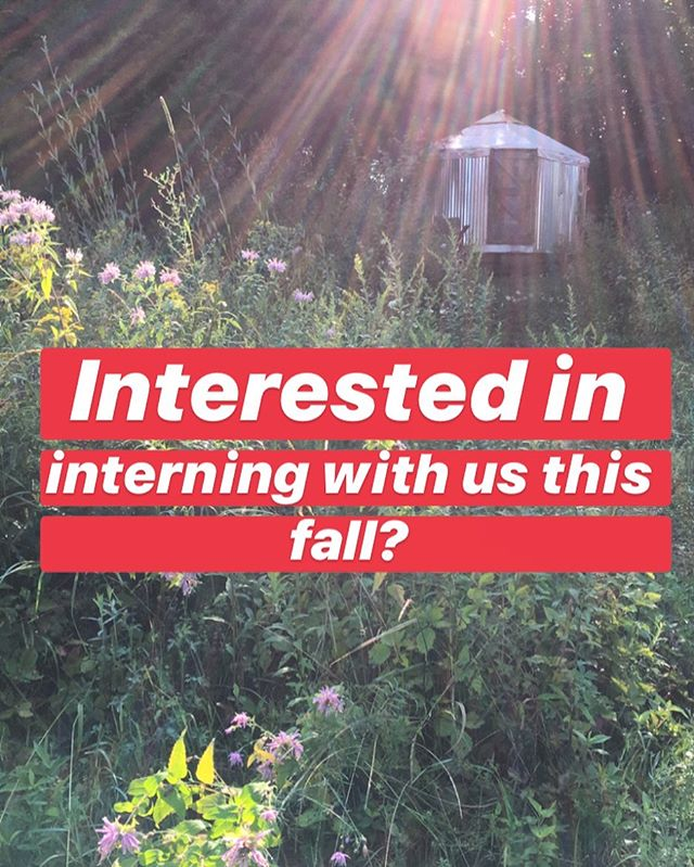 Our herb farm is looking for a 2019 fall intern to join us this September & October. Our community homestead, event space, and herb farm in Accord, NY is looking for an intern to support farm activities, particularly with harvesting and drying medicinal herbs including CBD hemp. Our internship offers a wonderful opportunity for those looking to learn more about homesteading and a small herb farm operation. We are also offering lodging on our beautiful land in a yurt or canvas tent, access to a communal kitchen, fresh herbs and veggies from the garden as well as some basic food items.  Please email deercreekcollective@gmail.com for more information and an application 🌱