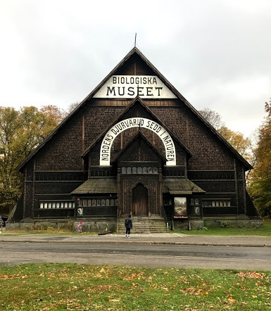 museet.jpg