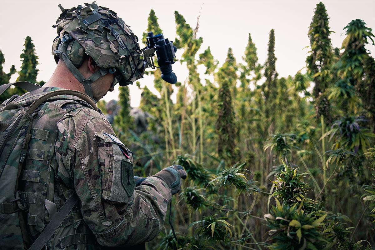 veterans_legalization_coffeeordie.jpg
