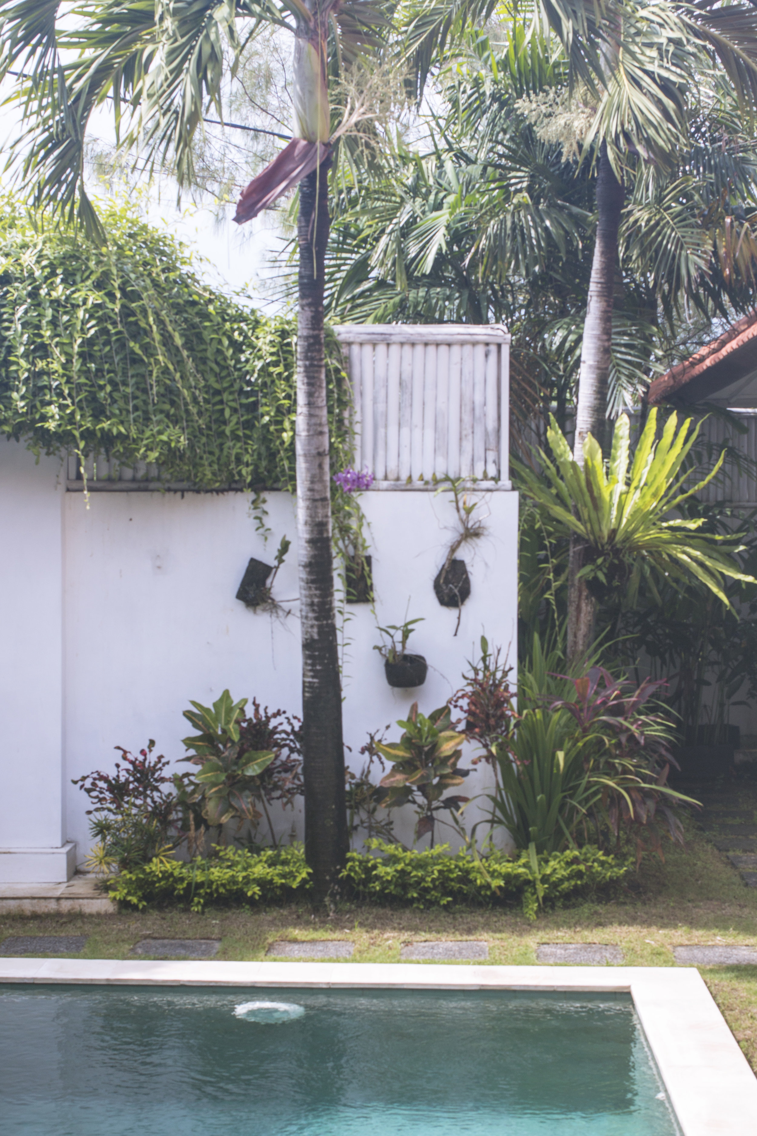 Indonesia0051.jpg