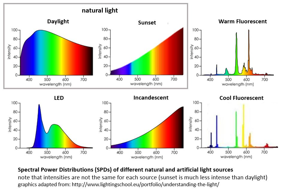 Note the high levels of blue vs the amount of red wavelength in the LED and Fluorescent spectral signatures. Notice the sunset signature has red and purple wavelengths as highest, which most closely matches the incandescent bulb signature. This is why I choose incandescent bulbs to light my home in the evening. As the evening progresses, I even dim my incandescents and sometimes use candles to continue to mimic the natural progression of dimming light at night for my hormonal health.