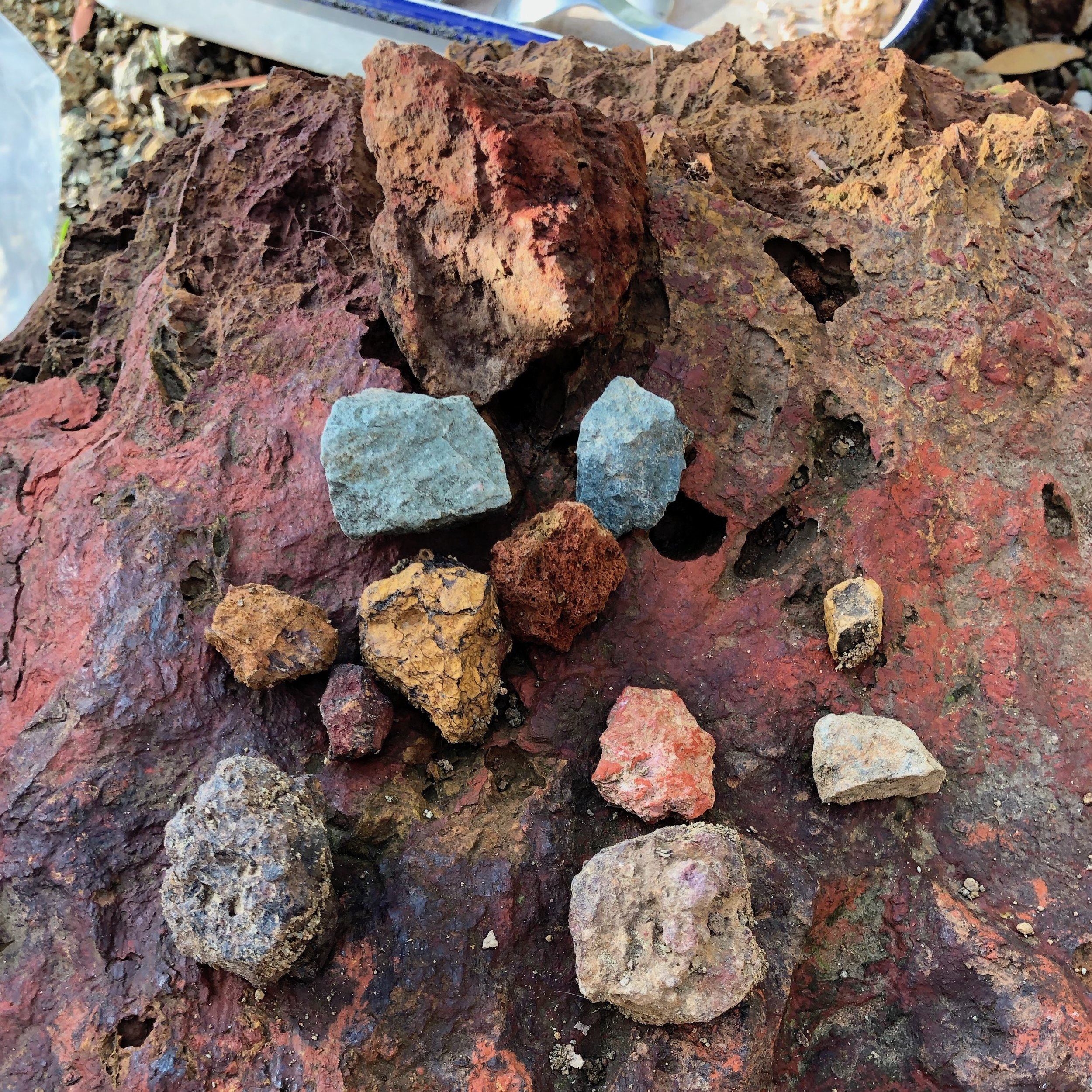 THE HIKE - During the trek, Heidi shared information on Ohlone culture, ochre-based traditions, and the story of the area as everyone collected rocks for pigment-making.
