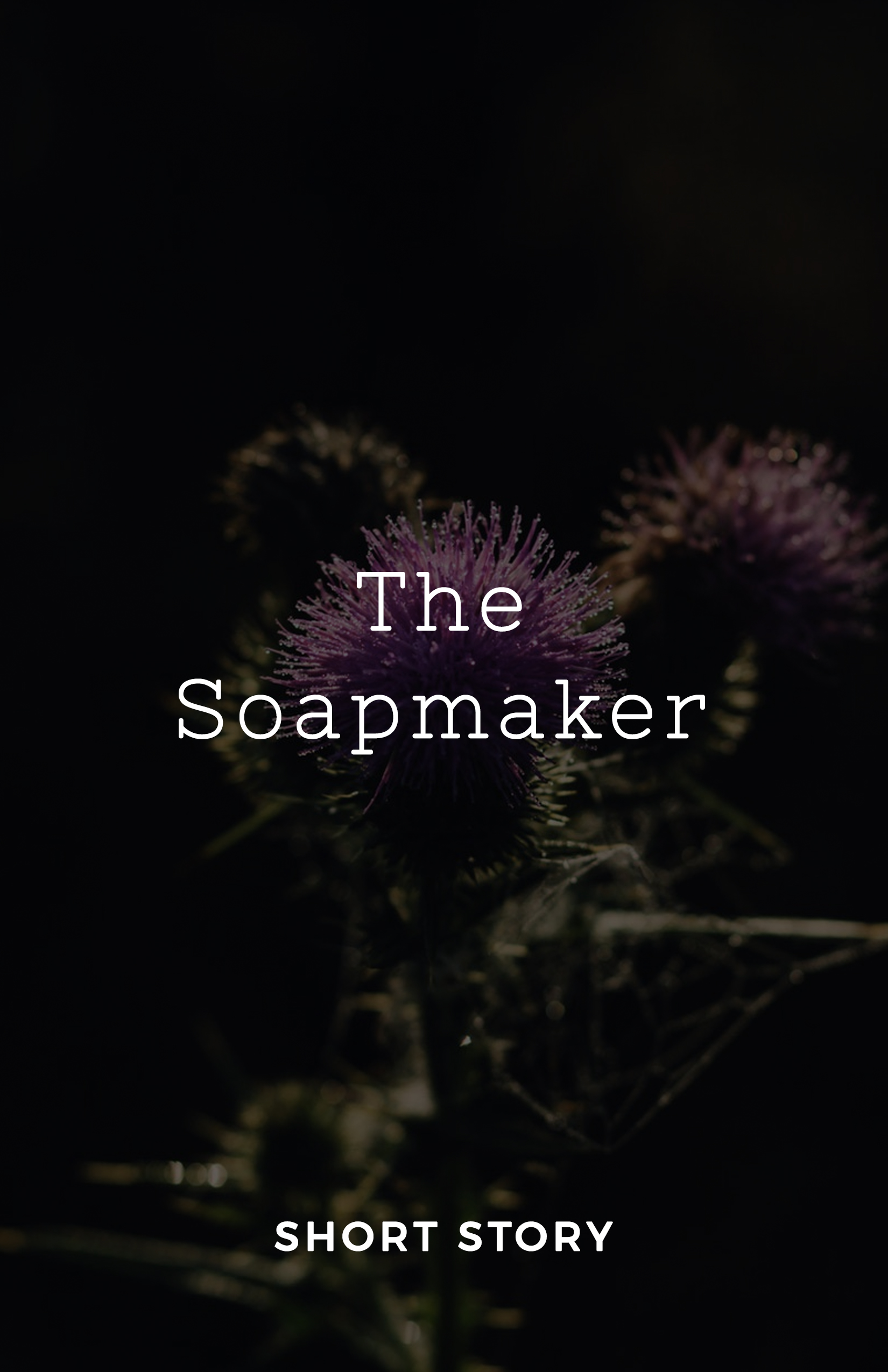 thesoapmaker.jpg