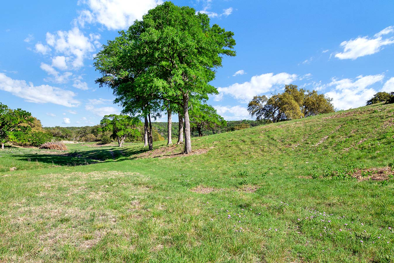 fredericksburg-realty-squaw-creek-ranch-real-estate-land-for-sale-home-house-historic-8.jpg