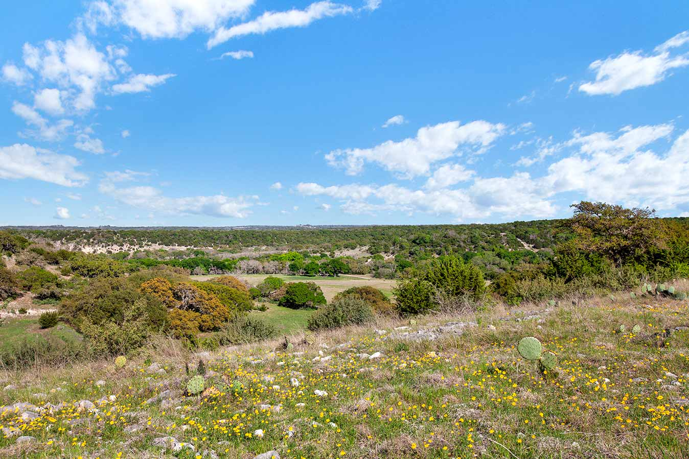 fredericksburg-realty-squaw-creek-ranch-real-estate-land-for-sale-home-house-historic-30.jpg