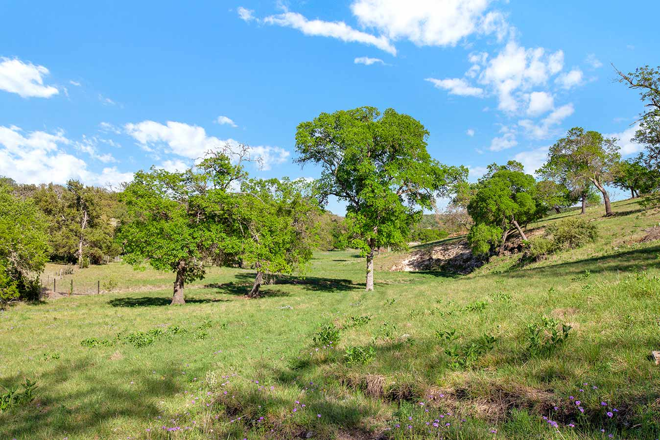 fredericksburg-realty-squaw-creek-ranch-real-estate-land-for-sale-home-house-historic-32.jpg