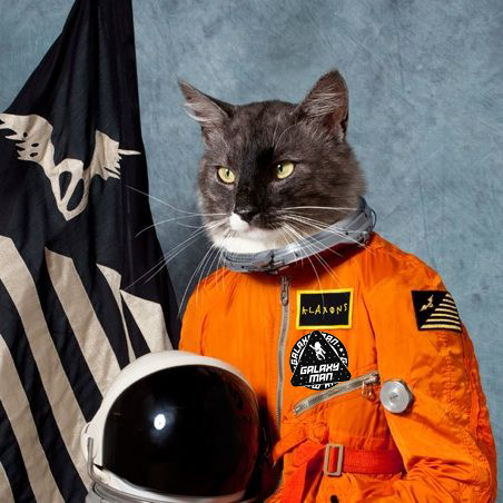 space cat for contact page w bw patch 5.png
