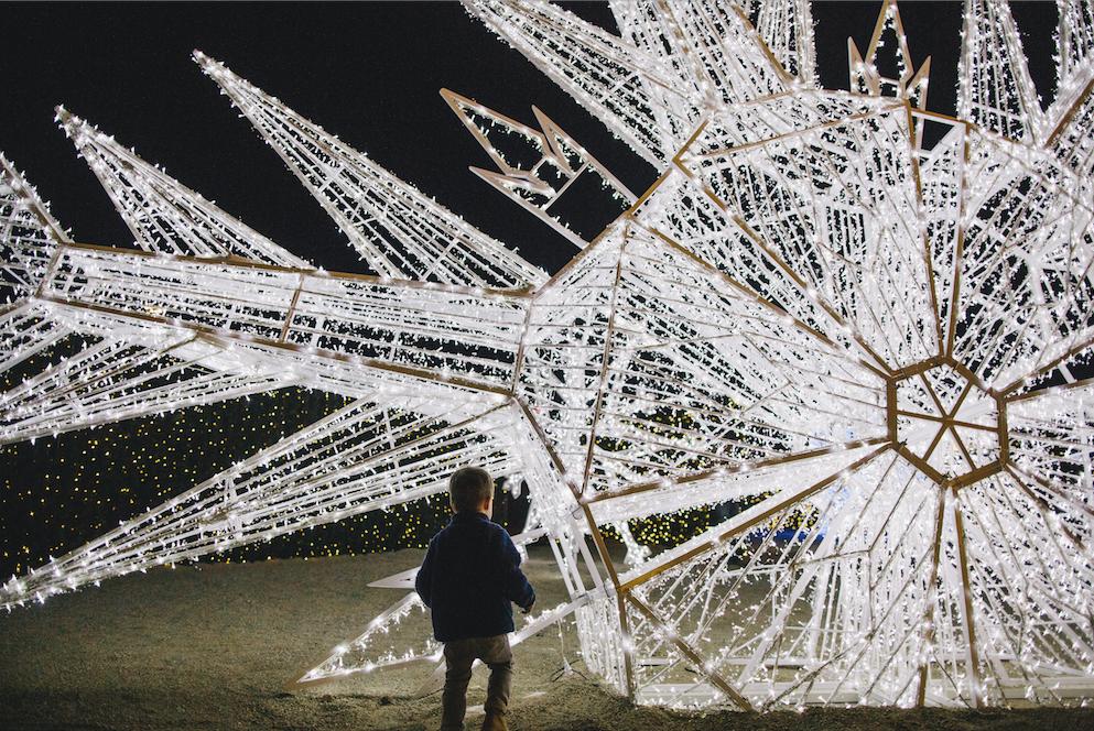 Enchant Christmas -