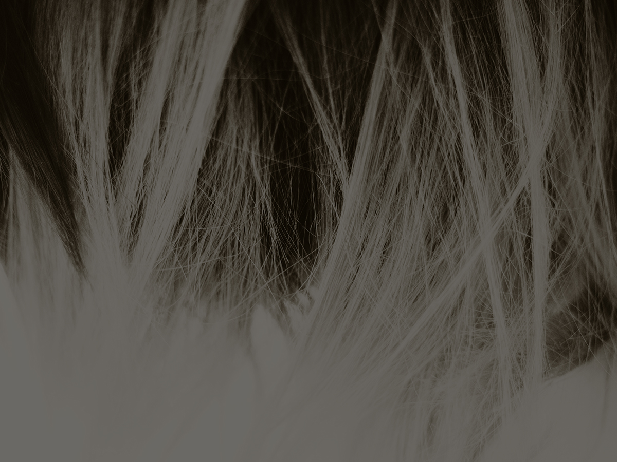 WIGS & HAIR EXTENSIONS - details coming soon