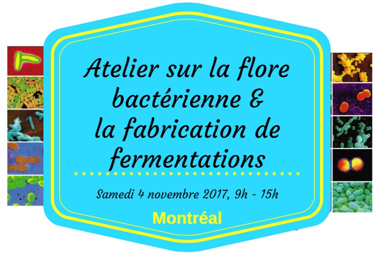 bandeau montreal 4 nov fermentation.jpg