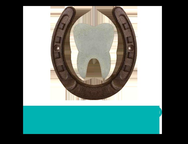 The logo for Dr. Nicole Byrne in Gansevoort, NY